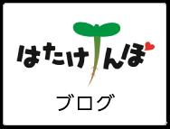 JA夢みなみ ファーマーズマーケット はたけんぼ|ブログ